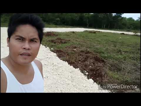Elite8 Property Solutions Inc. Site Viewing Lot for Sale in Panglao Bohol