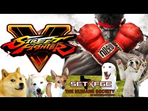 SF5: Humane Society Charity - Full Tournament! [TOP8 + Finals]