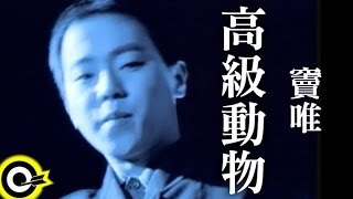 Thumbnail of music video - 竇唯 Dou Wei【高級動物 The higher being】Official Music Video