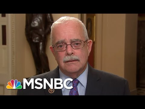 What Will The House Oversight Committee Ask Michael Cohen? | MTP Daily | MSNBC