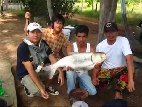 รวมคลิป 108 street fishing #1