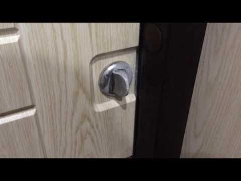 Дверь Снегирь Torex