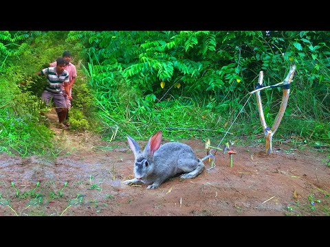 Primitive Technology: Rabbit Trap in village Land And Cooking Eating Delicious   HUNTER COOKING