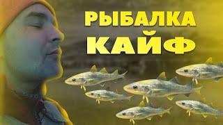 Рыбалка на льду 2021 кайф Подводная съемка Жарим рыбку Рыбалка с комфортом アイスフィッシング2021