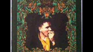 Gavin Friday - Falling Off The Edge Of The World