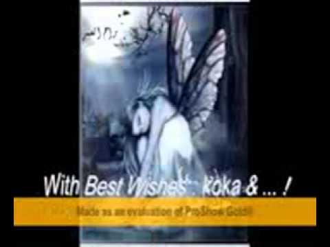 koka 3gp   4shared com   file sharing   download movie file
