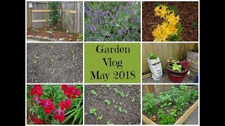 Garden Vlog May 2018 - A New Garden Bed & More Planting