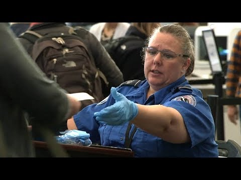 Strike! Barbara Ehrenreich Calls on TSA Workers to Walk Off Job in Protest of Government Shutdown