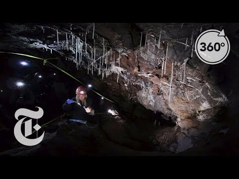 Spelunking in Search of Antibiotics | Daily 360