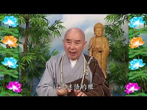 Kinh Đại Phương Quảng Phật Hoa Nghiêm, tập 0256