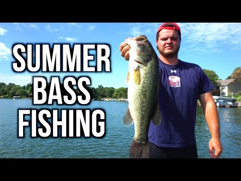 Summer Bass Fishing with Buzzbaits, Chatterbaits and Soft Plastics