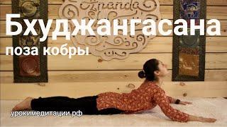 асаны йоги видео для начинающих