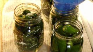 Picking And Canning Jalapenos