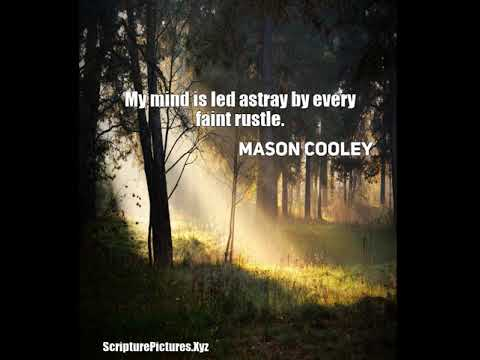 Mason Cooley: My mind is led astray by every faint rustle....
