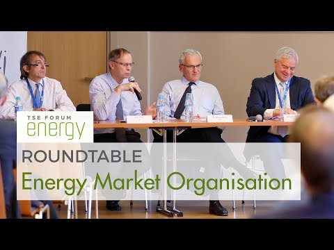 TSE Forum 2017 - Roundtable: Energy Market Organisation