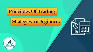 Principles of the Forex Trading Beginner Strategy - ArrowPips Forex Signals