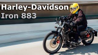 Harley-Davidson Iron 883 - la más vendida de la firma en México   Autocosmos