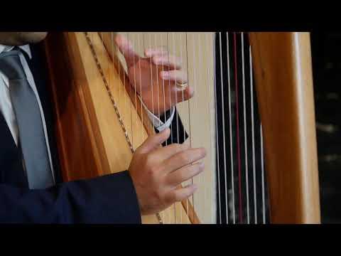 1980s - Mark Levin Harpist
