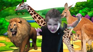 ZOO Animals video for kids