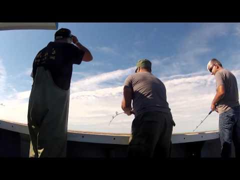 Deep Sea Cod Fishing P.E.I. Canada