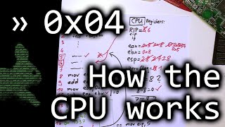 How a CPU works and Introduction to Assembler - bin 0x04