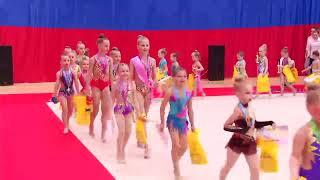 """Открытый турнир """"Олимпия Иска"""" по художественной гимнастике """"Parnassius"""" 19.05.19 г"""