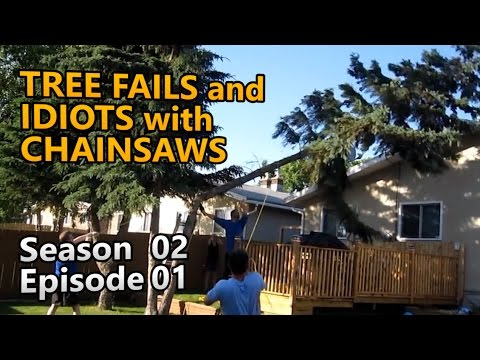 All new and rare! Tree Fails and Idiots with Chainsaws S02E01
