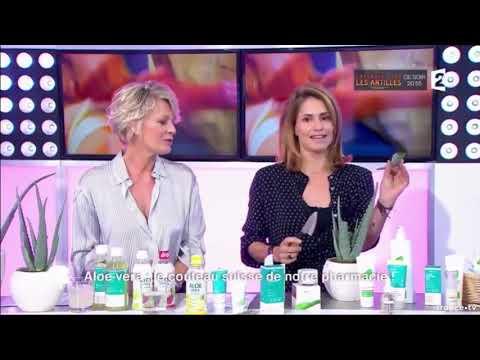 Aloe vera le couteau suisse de notre pharmacie   France 2