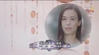 Rebecca Lim & Shaun Chen《绝世好工》Theme Song - 年轮