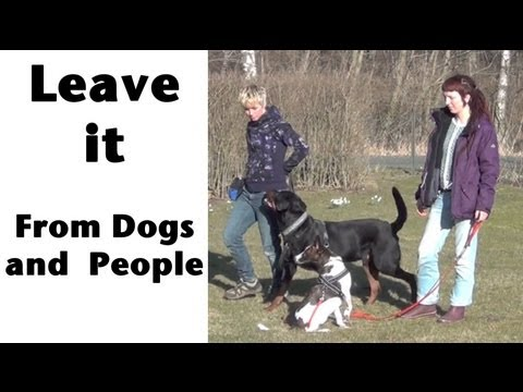 'Leave it' from dogs and people- clicker dog training