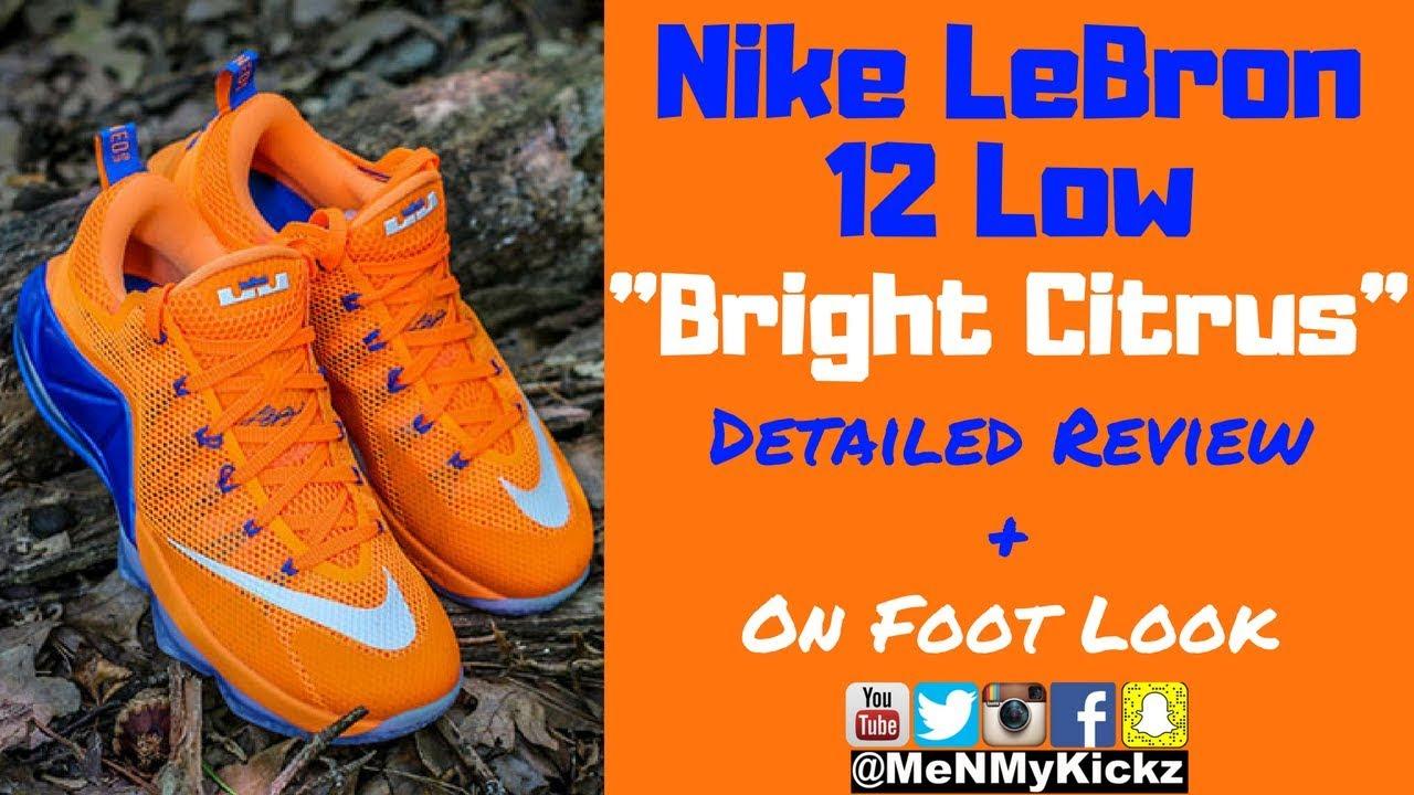 8ab8cdc37d66 Nike LeBron 12 Low