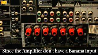 How to connect Amplifier & Speakers Using Banana Plugs