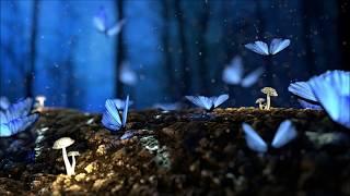 Age Of Nemesis : Tree Of Life Symphonic Version
