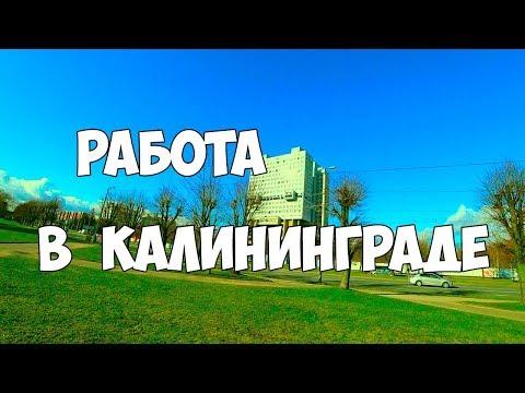 Работа в Калининграде, зарплата, поиск работы, биржа труда