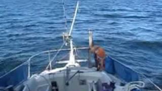 Homemade Windvane Wm-design, Singlehanded Spinnaker Sailing