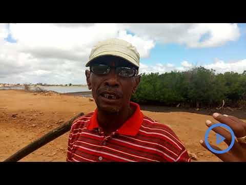 Lamu man claims to have discovered medication for Chikungunya fever