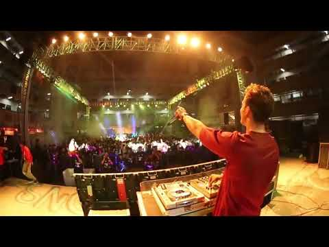 Vande Mataram played at huge concert by foreign dj