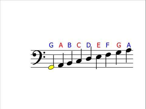 Music Theory   Bass Clef Understanding & Identifying Notes