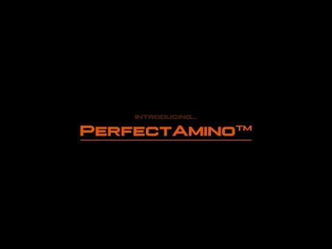 perfectamino---all-natural-essential-amino-acid-protein-supplementation-from-bodyhealth