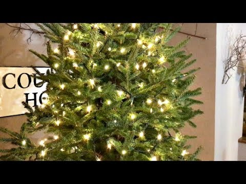 How To Put Lights On A Christmas Tree Video - Christmas Tree Decorating Tips - How To Put Lights On A Christmas Tree Video - Christmas Tree