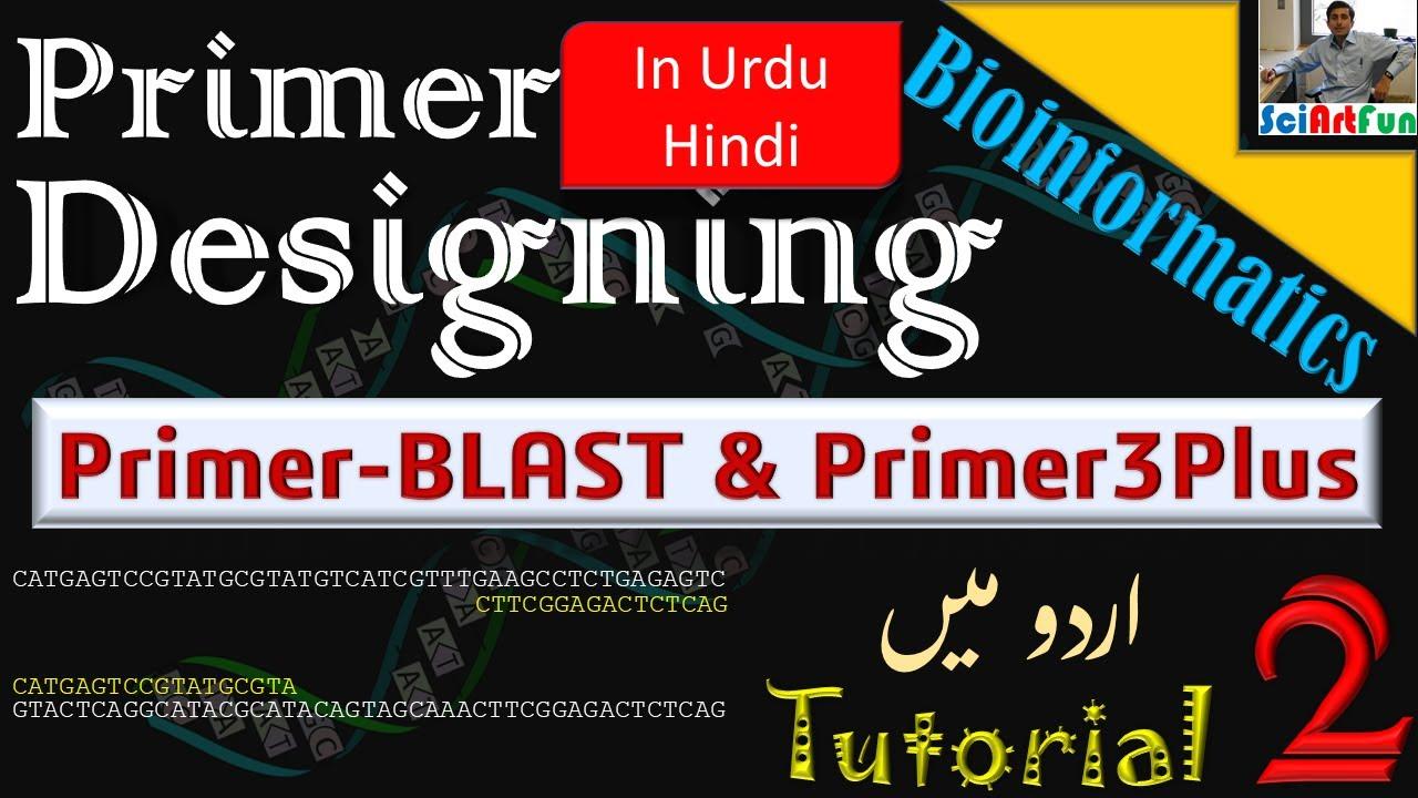 Primer Designing | Using NCBI Primer BLAST and Primer3Plus (Urdu/Hindi) || Tutorial 2 - YouTube