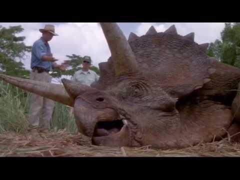 Paleontology Training