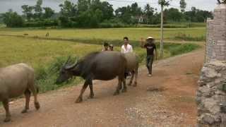 Phong Nha Farmstay, Vietnam  - Part I