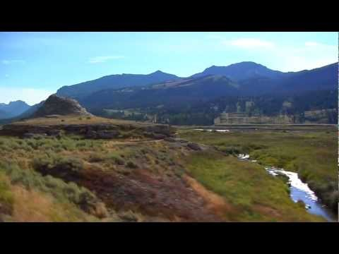 Yellowstone National Park | Part 6: Tower-Roosevelt to Cooke City