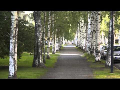 Йоэнсуу, Финляндия // Joensuu, Suomi