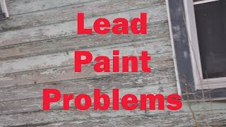 LEAD PAINT MAKES YOU STUPID home inspection poisoning