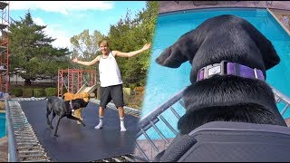 DAY IN THE LIFE OF ROSE AND LUNA!! *GOPRO POV*