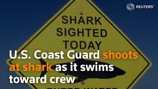 U.S. Coast Guard shoots at shark as it swims toward crew