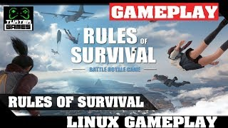 Rules of Survival Linux gameplay