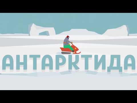 Чевостик: про Антарктиду. Для дошкольников и школьников